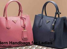 Modern Handbags for Ladies