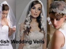 Stylish Wedding Veils