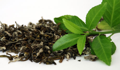 Benefits of Using Green Tea