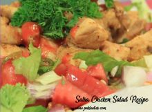 Salsa Chicken Salad Recipe