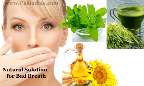 Natural Solution for Bad Breath