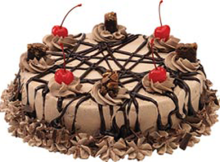 Swiss Chocolate Cream Cake Recipe