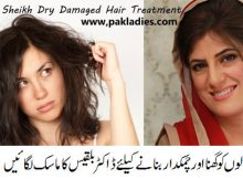 Dr Bilquis Sheikh Dry Damaged Hair Treatment