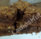 One Bowl Chocolate Brownies Recipe