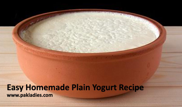 Easy Homemade Plain Yogurt Recipe